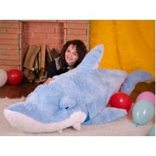Большая Акула Симпатяга