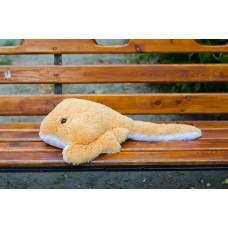 Морской скат большой
